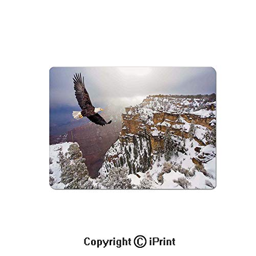Large Gaming Mouse Pad Aerial View of Bald Eagle Flying in Snowy Grand Canyon Rocky Arizona USA Extended Mat Desk Pad Mousepad Non-Slip Rubber Mice Pads 9.8