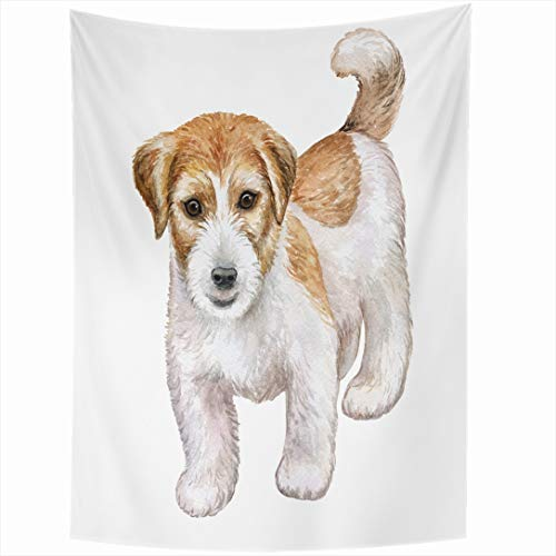 Jack Russell Rough - Ahawoso Tapestry 60x90 Inch Baby Brown Attentive Dog Jack Russell Terrier Rough Beast Breed Canine Curiosity Design Puppy Wall Hanging Home Decor for Living Room Bedroom Dorm