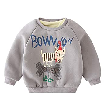 Fairy Baby Toddler Baby Unisex Winter Fleece Outfit Cartoon Sweatshirt Thick Pullover Size 2T (Gray)