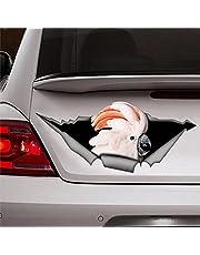 Kaketoe sticker papegaai sticker vogel sticker stickers auto sticker venster sticker vinyl sticker gestanst stickers grappige stickers bumper stickers aanwezig