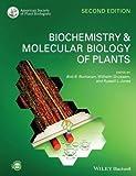 Biocemistry And Molecular Biology Of Plants 2Ed (Pb 2015) Spl Price