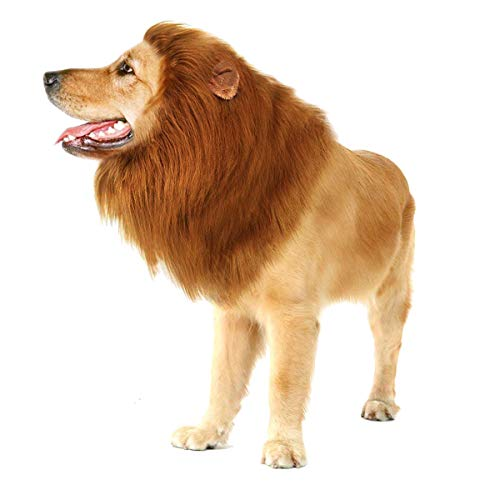 (GRE1BEE Dog Lion Mane Realistic & Funny for Dogs Complementary Christmas Halloween Birthday Party for Dog Costumes Lion Wig for Medium to Large Sized -Ear and Tails (Dark)
