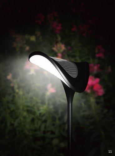 Tropical Garden Lighting