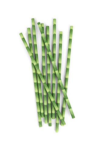 Kikkerland Biodegradable Paper Straws, Bamboo, Box of 144 -