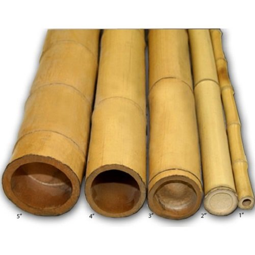 Backyard X-scapes Natural Bamboo Poles 2in x 8ft (10Pieces)