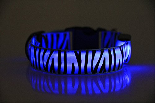 Lalago LED Zebra Stripe Night Safety Flashing Dog Collar Light up Glowing Pet Collar (Blue, S)