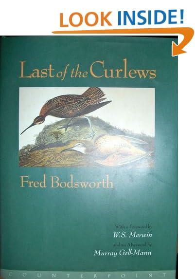 Last of the Curlews ebook