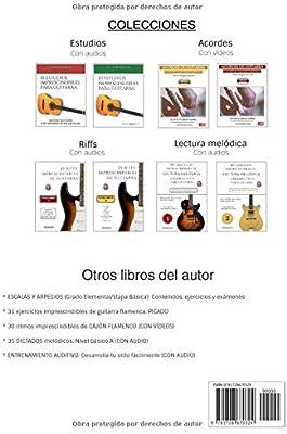 25 riffs imprescindibles de guitarra: Volumen 2 con mp3 Colección ...