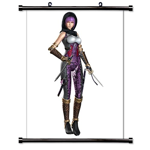 Amazon.com: Ninja Gaiden Videogame Fabric Wall Scroll Poster ...