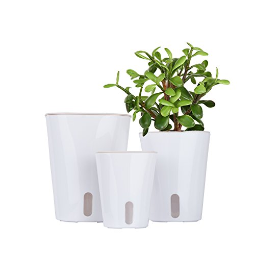 Vencer Self Watering Planter (3 Pack) Modern Decorative Planter Pot for All House Plants Flowers, Herbs,African Violets,Succulents,White,VF-066 by Vencer