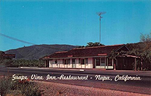 Postcard Grape Vine Inn Restaurant in Napa, California~118586