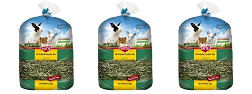 Kaytee All Natural lWvdja Timothy Wafer-Cut Hay for Rabbits & Small Animals, 3 Pack by Kaytee