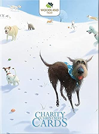 charity christmas cards alm8726 snowballs toby the dog stephen hanson - Animal Charity Christmas Cards