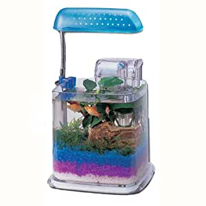 Razzle dazzle fish aquarium with light for Amazon fish tank filter
