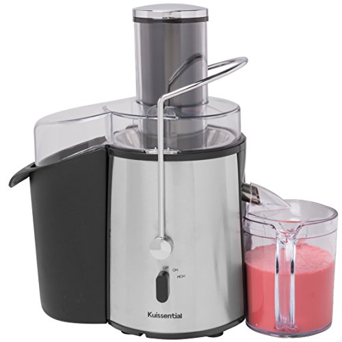 Professional Juicer Machine - 2-Speed 700 Watt Easy Clean, Fruit & Vegetable Extractor, ETL Certified, BPA Free (Best Low Price Juicer)