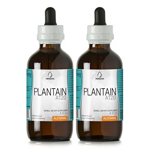 Plantain A120 (2pcs) Alcohol Herbal Extract Tincture, Super-Concentrated Organic Plantain (Plantago Major) Dried Leaf (2x4 fl oz) -