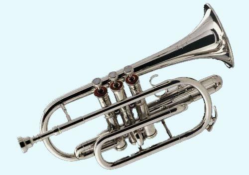 Global Art World New Stylish Instrument Beautiful Look Cornet With Mouth Piece Musical Item MI 08 by Global Art World