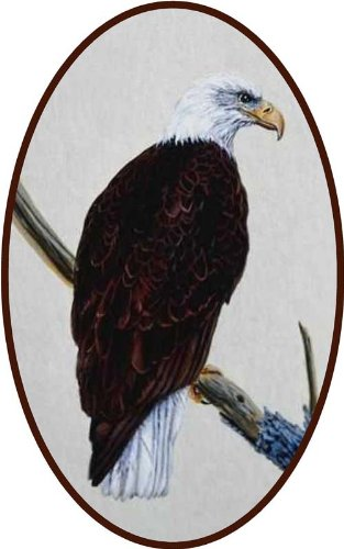 Bald Eagle Stained Glass - American Bald Eagle - Etched Vinyl Stained Glass Film, Static Cling Window Decal