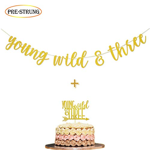 Young Wild & Three Gold Glitter Banner Sign and Young Wild & Three Cake Topper for Wild Three Boho Tribal Themed 3rd Birthday Party Supplies