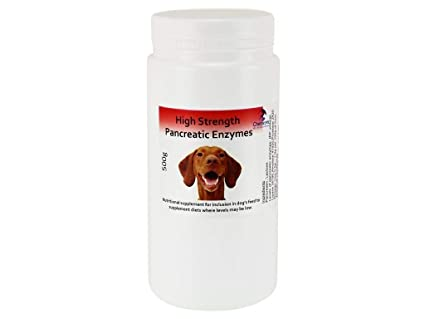 High Strength Pancreatic Enzyme Powder for dogs & cats x 500g