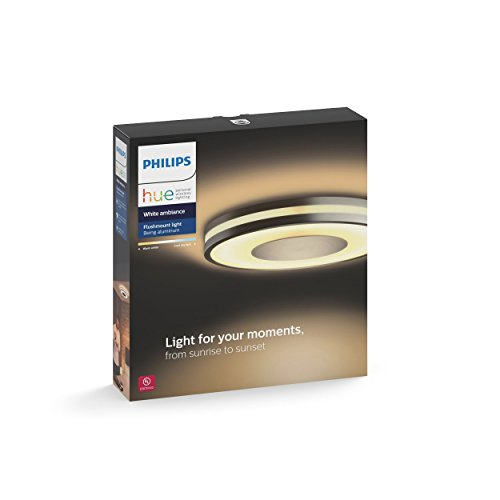 Philips Hue White Ambiance Being Dimmable LED Smart Flushmount (Large Image)