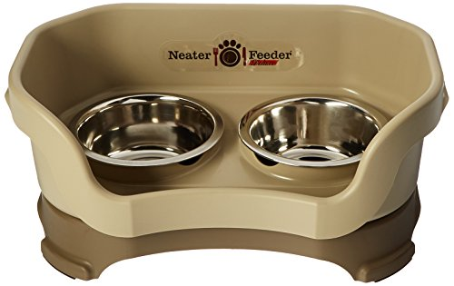 Neater Feeder Deluxe Small Dog (Cappuccino) - The Mess Proof Elevated Bowls No Slip Non Tip Double Diner Stainless Steel Food Dish with Stand