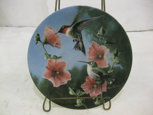 Collector Plate Garden - Plate Edwin M Knowles The Hummingbird Seventh Issue in The Encyclopaedia Britannica Birds of Your Garden Collection Decorative
