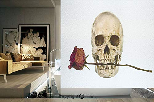 Decorative Privacy Window Film/Skull with Dry Red Rose in Teeth Anatomy Death Eye Socket Jawbone Halloween Art Decorative/No-Glue Self Static Cling for Home Bedroom Bathroom Kitchen Office -
