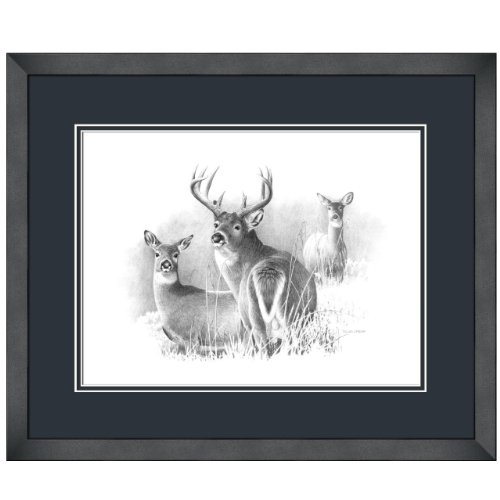 Reflective Art, Whitetail Deer, Black Framed, 18.5 by 22.5-inch
