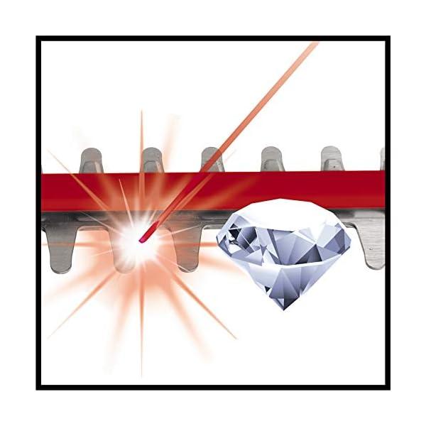 Einhell Tagliasiepi a Batteria Ge-Ch 36/65 Li - Solo Power X-Change (Ioni di Litio, 2X 18 V, Lama in Acciaio Tagliato Al… 7 spesavip