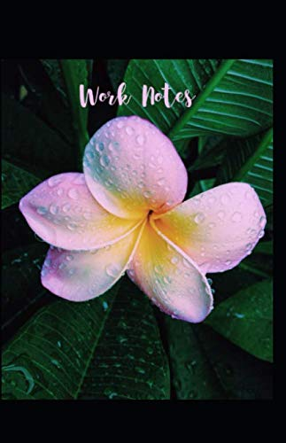 Work Notes: Plumeria Flower Notebook Journal for Work Meetings Bonus 8 Check List Pages for Important Projects (East West Journal Of Economics And Business)