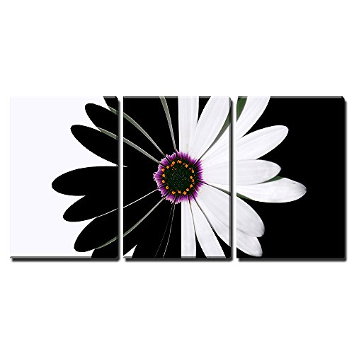 "Wall26 - 3 Piece Canvas Wall Art - flower black and white - Modern Home Decor Stretched and Framed Ready to Hang - 24""x36\""x3 Panels"