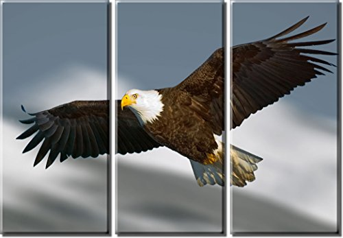 Picture Sensations Framed Huge 3-Panel Flying Bald Eagle Canvas Art Print - 30