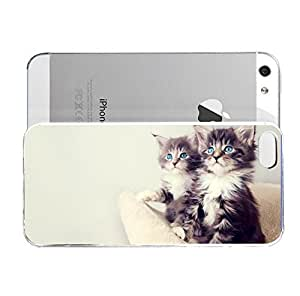 iPhone 5&5S cover case Animals Blue Eye Kittens