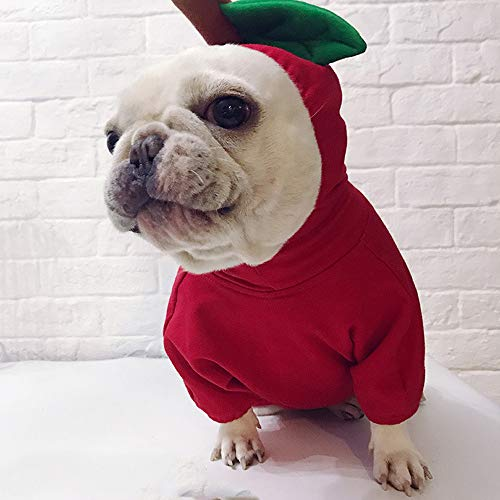 Goodtrade8 Clearance Christmas Dog Clothes Pet Sweatshirt for Small Large Dogs Puppy Girl Boy Supplies Costume Apple (S, Red)