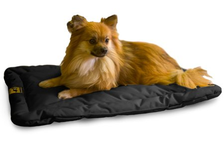 Indestructible Dog Beds Webnuggetz Com