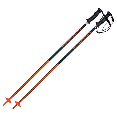 Volkl Phantastick Kids' Ski Poles (Petrol, 105 cm)