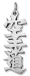 "Sterling Silver Japanese/Chinese ""Karate"" Kanji Symbol Charm"
