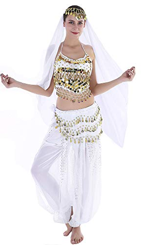 Sexy Halloween Costumes for Women Belly Dancer Costume Adult