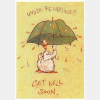 Pack of 3 Under The Weather Greetings/Get Well Soon Cards Minter-Kemp