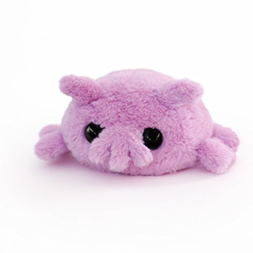 Hashtag Collectibles Stuffed Sea Pig plushie - Mini
