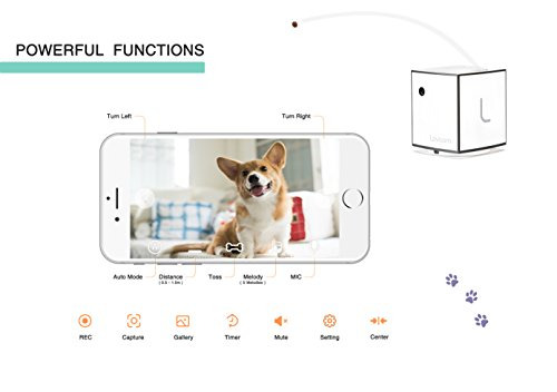 LOVOOM Pet Camera: Kibble Tossing Play, Wi-Fi Kibble Cam with Pan Zoom Two Way Audio Remote Control for Dogs and Cats (Black) by LOVOOM (Image #3)