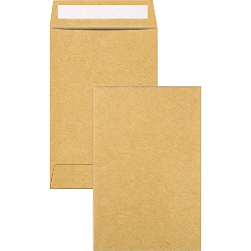 Sumind 60 Pack Coin Envelopes Kraft Mini Small Parts Envelopes 2.4 x 3.5 Inches for Coin, Jewelry, Stamps, Craft Supplies, Small (Quality Park Coin Envelope)