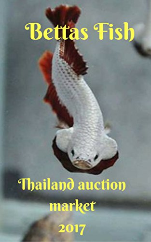 Bettas Fish In Thailand Auction Market: Betta fish 101