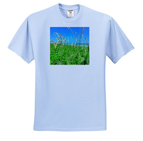 3dRose Florida - Image Of Florida Sea Oats On Naples Beach - T-Shirts - Adult Light-Blue-T-Shirt XL (TS_274932_53) - Naples Three Light