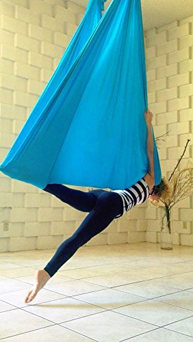 Dasking Premium Aerial Yoga Hammock Kit (Light Blue)