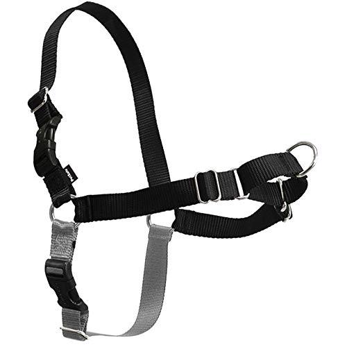 (Pet Supplies Pet Leash - Dog Leashes Explosion-Proof Pet Vest Chest Strap Large Dog Medium Golden Dog Chain -\@ (Color : Red, Size : L))
