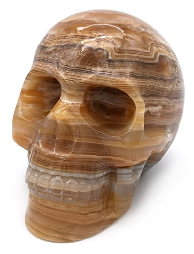 """Elegant Amber Onyx Aragonite Skull Figure, 4.75"""" Tall, 6"""" Long, 3.5"""" Wide (5.7lb), Carved from Real North American Amber Onyx Aragonite - The Artisan Mined Series by hBAR"""