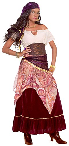 Gypsy Costume For Women (Forum Novelties Women's Madame Mystique Costume, Multi, One Size)