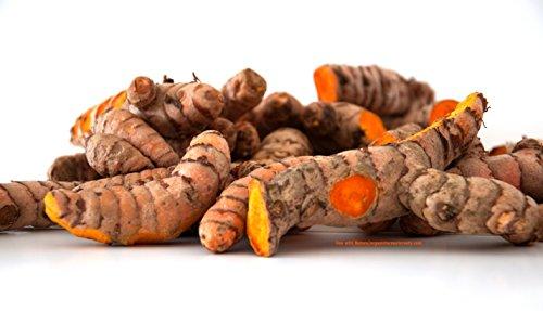 Turmeric Roots Curcuma longa: Organic Whole Fresh Raw 1 Lb.
